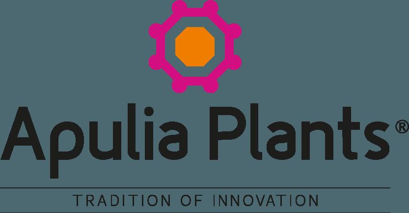 Apulia Plants-La nuova realtà della floricoltura pugliese di altissima qualità.